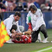 Robben Verletzung Oberschenkel